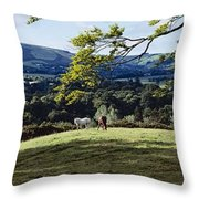 Tree In A Field, Great Sugar Loaf Throw Pillow