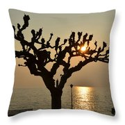 Tree In A Foggy Sunset Throw Pillow