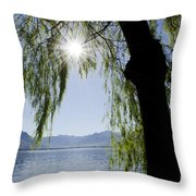 Tree In Backlight Throw Pillow