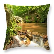 Tree In The Bend Throw Pillow