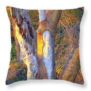 Tree In The Sunset Throw Pillow