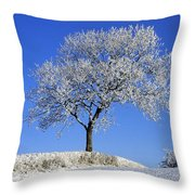 Tree In Winter, Co Down, Ireland Throw Pillow