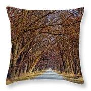 Tree Lined Lane Throw Pillow