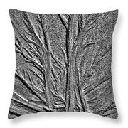 Tree Of Life In The Sands Of Time Hdr Conversion Throw Pillow
