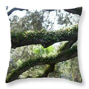 Tree Of Life Panorama Throw Pillow