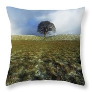 Tree On A Landscape, Giants Ring Throw Pillow