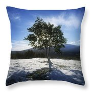 Tree On A Snow Covered Landscape Throw Pillow