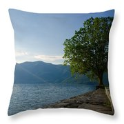 Tree On The Lake Front Throw Pillow
