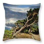 Tree Path Bridge Throw Pillow