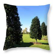 Tree Perspective Throw Pillow