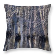 Tree Reflection Abstract Throw Pillow