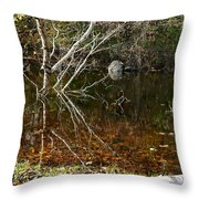 Tree Reflections Stoney Creek Throw Pillow