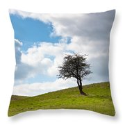 Tree Throw Pillow by Semmick Photo