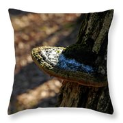 Tree Shelf Snow Sprinkled Fungus Throw Pillow