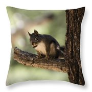 Tree Squirrel Throw Pillow