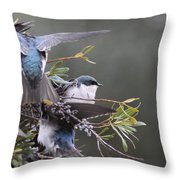 Tree Swallow - Standing Guard Throw Pillow