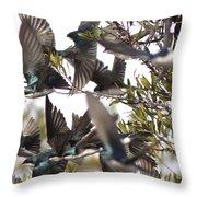 Tree Swallow Frenzy Throw Pillow