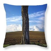 Tree Trunk Throw Pillow