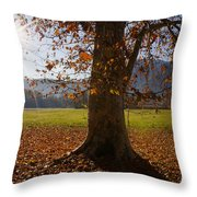Tree With Autumn Leaves Throw Pillow