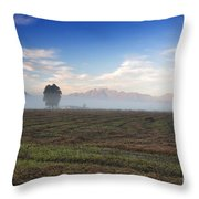 Tree With Fog On The Field Throw Pillow