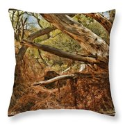 Tree Woods Throw Pillow