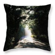 Treelined Road Throw Pillow