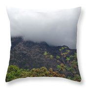 Trees And Leaves At The Base Of A Mountain With Clouds And Mist Covering The Top Throw Pillow
