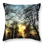 Trees And Sun In A Foggy Day Throw Pillow