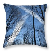 Trees And Trails Throw Pillow