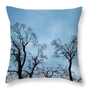 Trees. Autumn. Throw Pillow by Konstantin Dikovsky
