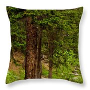 Trees By The Stream Throw Pillow