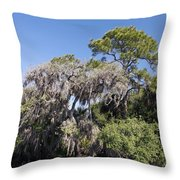 Trees Decorated With Moss Throw Pillow