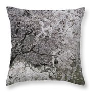 Trees Heavy With Cherry Blossoms Throw Pillow