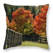 Trees In Autumn Throw Pillow