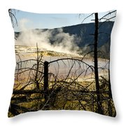 Trees In Nature Throw Pillow