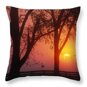 Trees In The Sunrise Throw Pillow