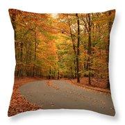 Trees Of Autumn - Holmdel Park Throw Pillow by Angie Tirado
