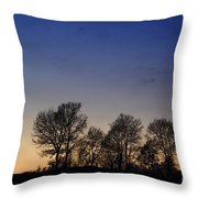Trees On A Hill In Sunset Throw Pillow