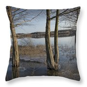 Trees On Flooded Riverbank No.1001 Throw Pillow