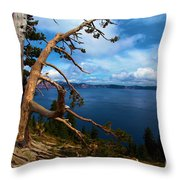 Trees On The Crater Throw Pillow