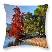 Trees On The Lake Front In Autumn Throw Pillow