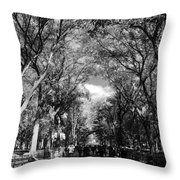 Trees On The Mall In Central Park In Black And White Throw Pillow
