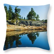 Trees Reflection In Water, Georgian Throw Pillow