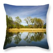 Trees Reflections On The Lake Throw Pillow