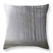 Trees With Fog And Snow Throw Pillow