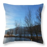 Trees With Sunlight Throw Pillow