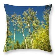 Treetop Color Throw Pillow