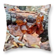 Tremella Mesenterica - Reddish Brown Brain Fungus Throw Pillow