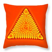 Triceratium Throw Pillow by M. I. Walker