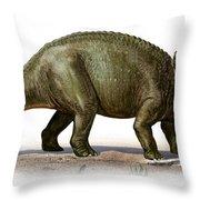 Triceratops Prorsus, A Prehistoric Era Throw Pillow